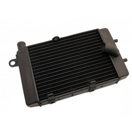 Motoprofessional Radiator Aprilia Tuono (2002-2005) left side